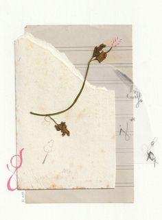 Soy Marina y vivo en Barcelona. Me encanta dibujar, los lápices de colores, cortar y pegar papeles...