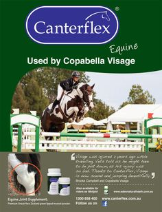 Visage was injured 2 years ago while travelling. Vets told us he might have to be put down, as his injury was so bad. Thanks to Canterflex, Visage is now sound and jumping beautifully. Brooke Campbell and Copabella Visage