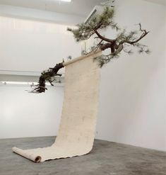 i never learn — Guo Gong - Pine, 2014 Artistic Installation, Shadow Art, Bedroom Murals, Stage Design, Land Art, Oeuvre D'art, Art Direction, Sculpture Art, Canvas Wall Art