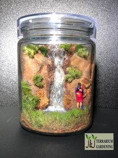 """Love in the Air Terrarium """"Being deeply loved by someone gives you strength, while loving someone deeply gives you courage!""""-Lao Tzu Zero maintenance terrarium through the use of preserved moss. Loving Someone, Preserves, Terrarium, Mason Jars, Zero, Strength, Gardening, Love, Terrariums"""