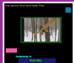 Free Squirrel Proof Bird Feeder Plans 125522 - The Best Image Search