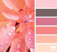 Autumn Glow | Design Seeds