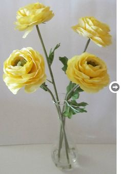"ranunculus - I hope to plant some in my garden. Produces lots of cutting flowers throughout the season. Victorian meaning:""You are radiant with charms."""