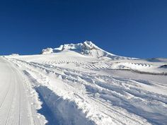Mt. Hood 1 week ago! There is plenty of snow here to ski well Register today for Summer Ski Camp at Mthood...June, July and August!  Sessions are filling up fast...