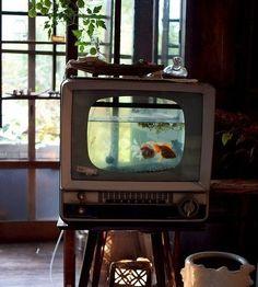 TV Set Fish Aquarium