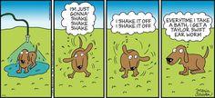 Shake it off! | Read Half Full #comics @ www.gocomics.com/half-full/2015/07/12?utm_source=pinterest&utm_medium=socialmarketing&utm_campaign=social | #GoComics #webcomic #dogs #TaylorSwift
