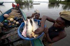 World Food Day: Sierra Leone -Fishing is the main source of food and income in the tiny riverside village of Mo-Albert. New techniques mean men can bring in more fish and women are able to preserve and sell greater quantities.