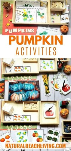 All About Pumpkin Unit Study - Pumpkin Lesson Plans and Activities - Natural Beach Living