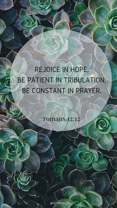 Romans 12:12 || Bible Verse Background - Victoria Glasel