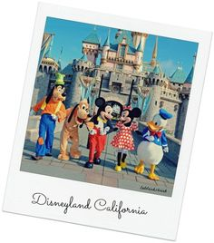 List of all the vegan/veg eats in Disneyland California and tons of other theme parks across the U.S.