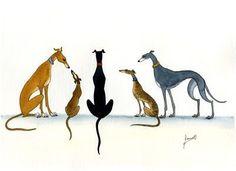 Gran Pintura Greyhound lurcher Whippet Perros Arte 6200 Dianne Heap Art Print Perro