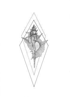 Dotwork shell Tattoo Design, Pen on Paper, Original Design Made by Kariaki Navy Tattoos, Dot Tattoos, Line Tattoos, Body Art Tattoos, Small Tattoos, 2pac Tattoos, Sternum Tattoos, Tatoos, Seashell Tattoos