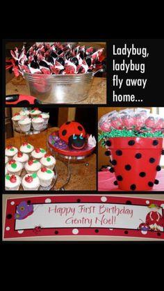 First birthday ladybug themed