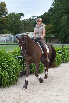 Janina wears Kep Chromo Caramel Meatal Helmet, Ea.St Vest Lisa in Fossil, HKM Lauria Garrelli Khaki Polo, and Gersemi Sigyn Full Seat Breeches Brown. Beelzebub wears HKM Lauria Garrelli Champagne Saddleblanket and matching Bandages, Judi Manche Ears Brown and Judi Browband in Famous Classic(Colorado Gold) and Judi Overreach Boots in Brown. All available in store at www.ridersxoxo.com
