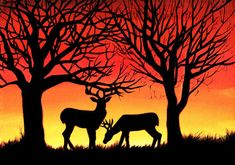 """""""Grazing Deer at Sunset"""", acrylic painting captures a common sight among residents of northern BC, as the deer come out to feed as the sun begins to set. We often enjoy bright, colourful sunsets which create brilliant silhouettes of deer and the trees. www.artbyalisonnewth.com"""