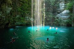 Yucatan, Mexico : Crystal Pool In The Mexico Jungle