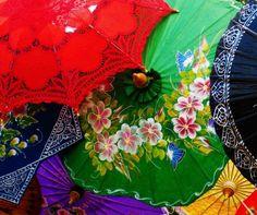 What beautiful umbrellas!