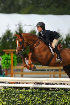 Haley Stradling & Altanero competing in the Older 3'6 Junior Hunters at Thunderbird Show Parks Summer Fort Classic.