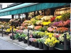 https://500px.com/floristsanfrancisco/about Flower Shops In San ...