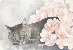 Cat Flower by Midori Yamada
