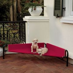 Indoor/Outdoor Corner Dog Beds 40 % off code  MP2W337 makes the large one $12