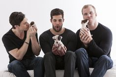 Chicago Blackhawks' Andrew Shaw, Corey Crawford, and Bryan Bickell with pit bull puppies (part of the Blackhawks' calendar to raise awareness for the breed).