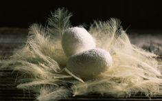 Découvrez la signification de la sériciculture de la soie, la définition de ce mot et de cet art et artisanat de Chine élevage vers à soie bombyx mûrier.