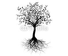 Vecteur : vecteur série, jeune arbre avec racines - vector tree with roots