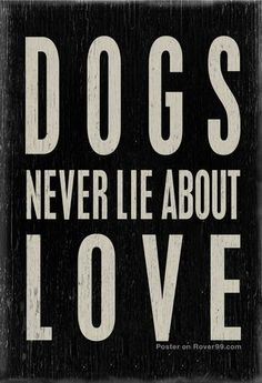 ♥ dog love ♥ #dogfordog