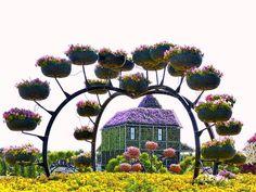 Jardín Milagro En Dubái