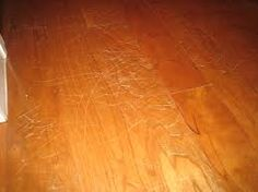 https://www.ross-homes-noco.com/blog  SCRATCHED HARDWOOD FLOORS: DIY FIXES   Hardwood floors are highly desirable for most homeowners but they come with their share of challenges when it comes to cleaning, maintenance, and repairs.   After a few months or years of heavy use from kids playing with toys and chairs being shuffled around, it may be time for some DIY fixes.   More at: http://ross-newhomes-noco.com/scratched-hardwood-floors-diy-fixes/