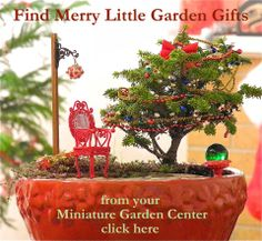 Your Miniature Garden Shop