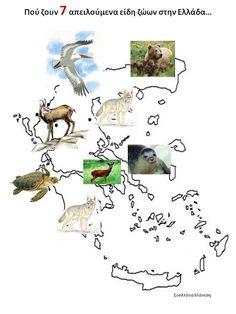 Δραστηριότητες, παιδαγωγικό και εποπτικό υλικό για το Νηπιαγωγείο: ΧΑΡΤΕΣ Pet Day, Too Cool For School, Animal Crafts, Animals And Pets, Diy And Crafts, Cool Stuff, Green, Blog, Teaching Ideas