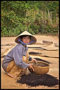 Vietnam Foto's   Columbus Travel