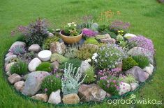 Beautify each garden: 21 ideas for magical garden islands that will enjoy you all season! - All For Garden Rock Garden Design, Backyard Garden Design, Backyard Patio, Rockery Garden, Succulents Garden, Landscaping With Rocks, Front Yard Landscaping, Landscaping Ideas, Garden Yard Ideas