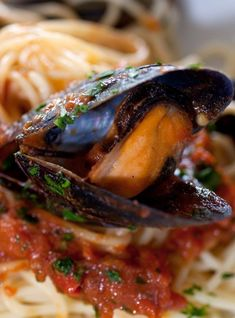 Pressure cooker mussels in spicy tomato sauce. Mussels with vegetables and spices cooked in a pressure cooker. Very simple and easy mussel recipe. #pressurecooker #instantpot #seafood #mussels #dinner Seafood Recipes, Cooking Recipes, Recipes Dinner, Shrimp Soup, Spicy Tomato Sauce, How To Dry Oregano, Pressure Cooker Recipes, Stuffed Peppers