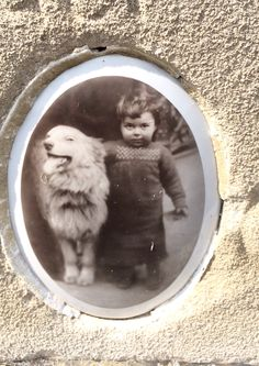 A picture of a boy & his dog on a tombstone in Mount Carmel Cemetery