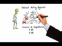 Pharmacology - ADRENERGIC RECEPTORS & AGONISTS (MADE EASY) - YouTube