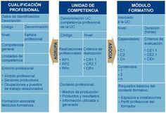 Estructura de los certificados de profesionalidad