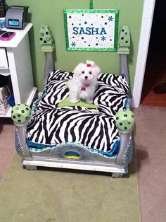 FInished bed including the dog :) Funny Dog Beds, Funny Dogs, Crafty Craft, Crafting, My Precious, Four Legged, Toy Chest, Pet Dogs, Baby Car Seats