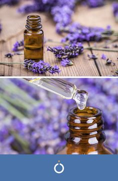 Olio do lavanda Diy Natural Beauty Recipes, Diy Beauty, Handmade Cosmetics, Perfume Oils, Medicinal Plants, Kraut, Coconut Oil, Essential Oils, Hobby