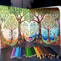 113 Best Enchanted Forest Striped Trees Images Coloring Books