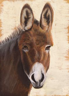 Donkey drawing in pastels by Margret Heyn. Donkey Drawing, Pastel Art, Donkeys, Sloth, Animal Drawings, Farm Animals, Pastels, Mammals, Painting & Drawing