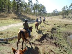 Saddle up and experience the Oz outback in all its glory!