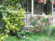 Hope Designs traditional exterior