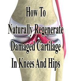 Young people who are regularly engaged in sport or have excess weight are also prone to damaging their cartilage, Learn here how to naturally regenerate it