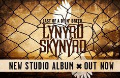 Lynyrd Skynyrd <3