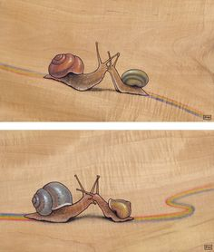 Snail Kiss - red/green and blue/yellow