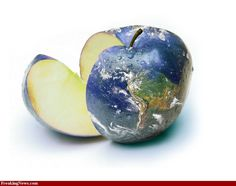 Teacher's apple globe