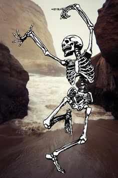 Dancing Skeleton, amidst tons of rocks and boulders, with the ocean raging in. What an imagination. J.E.W.